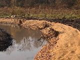 rootwad video thumbnail